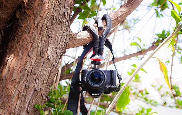 blitzwolf octopus tripod review dslr camera hanging in a tree